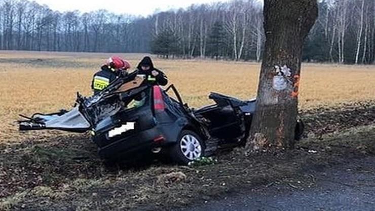 Auto uderzyło w przydrożne drzewo, które miało zostać wycięte. Dwie osoby zginęły