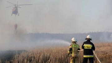 Zbiórka Biebrzańskiego Parku Narodowego dla OSP. Podano kwotę