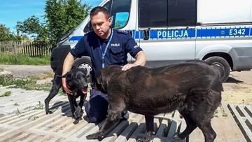 Policjant po raz drugi adoptował okrutnie potraktowanego psa