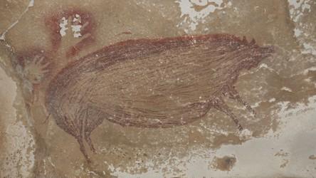 W indonezyjskiej jaskini znaleziono najstarsze dzieło sztuki figuratywnej [FILM]