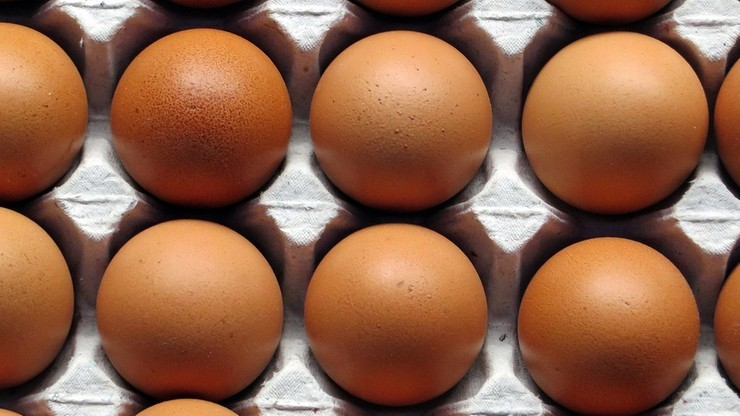 W próbkach jaj z trzech ferm z Mazowsza i Wielkopolski wykryto przekroczenie norm fipronilu