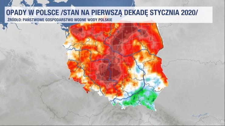 Trzy miesiące niemal bez deszczu. Susza w Polsce zagraża lasom