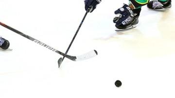 NHL: Szóste zwycięstwo Detroit Red Wings. Hat-trick Sama Gagnera
