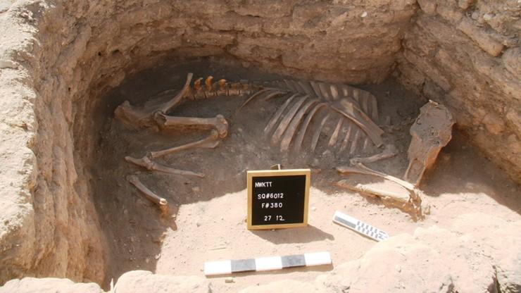 """Odnaleziono """"Zaginione Złote Miasto"""" sprzed 3 tys. lat. To odkrycie stulecia w Egipcie"""
