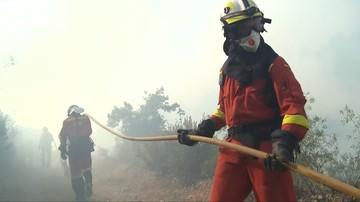 Ponad 20 mln euro strat po pożarze w środkowej Portugalii