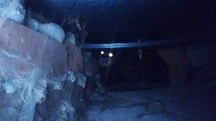 Opole. Kot zniknął w tajemniczych okolicznościach. Znaleźli go pod wanną sąsiada