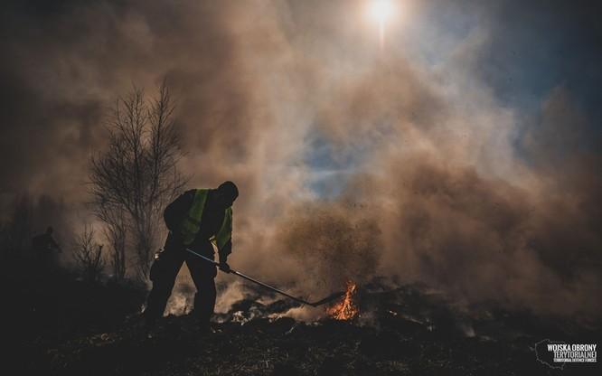 W gaszeniu pożaru pomagały Wojska Obrony Terytorialnej