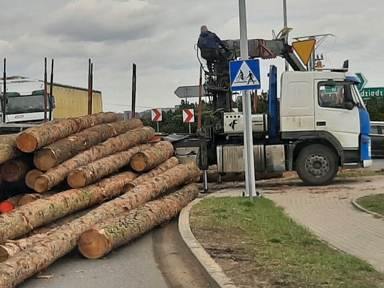 Wysypany ładunek pni drzewnych zablokował przejazd na rondzie.