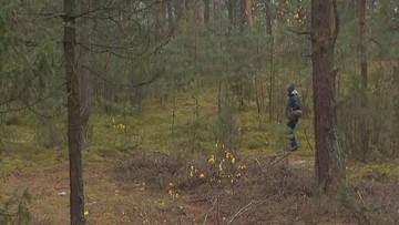 """Grzybiarze gubią się w lasach. Policja: """"chodzą w pojedynkę, nie znają terenu"""""""