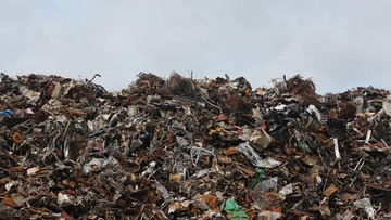 Puls Biznesu: rząd idzie na wojnę z mafią śmieciową