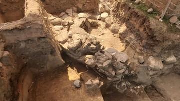 W Gnieźnie odkryto fragment unikatowej budowli. Mogła być siedzibą pierwszych władców Polski