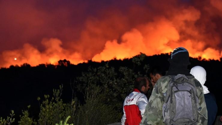 Kolejny dzień walki z pożarami w Czarnogórze. W walce z żywiołem pomagają strażacy z innych państw