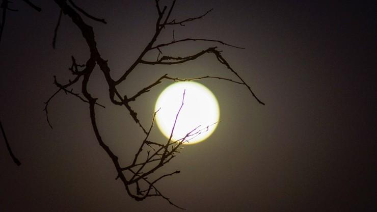 Pełnia Księżyca w obiektywie #zostanwdomu