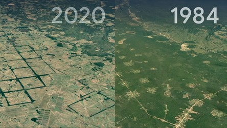 Najnowsze zdjęcia satelitarne ujawniają, jak ludzkość zmienia oblicze Ziemi [WIDEO]
