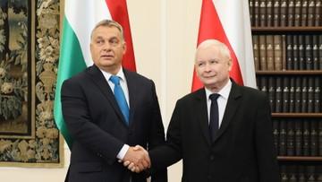 PiS: współpraca Polski i Węgier - nadzieją na lepszą przyszłość Europy