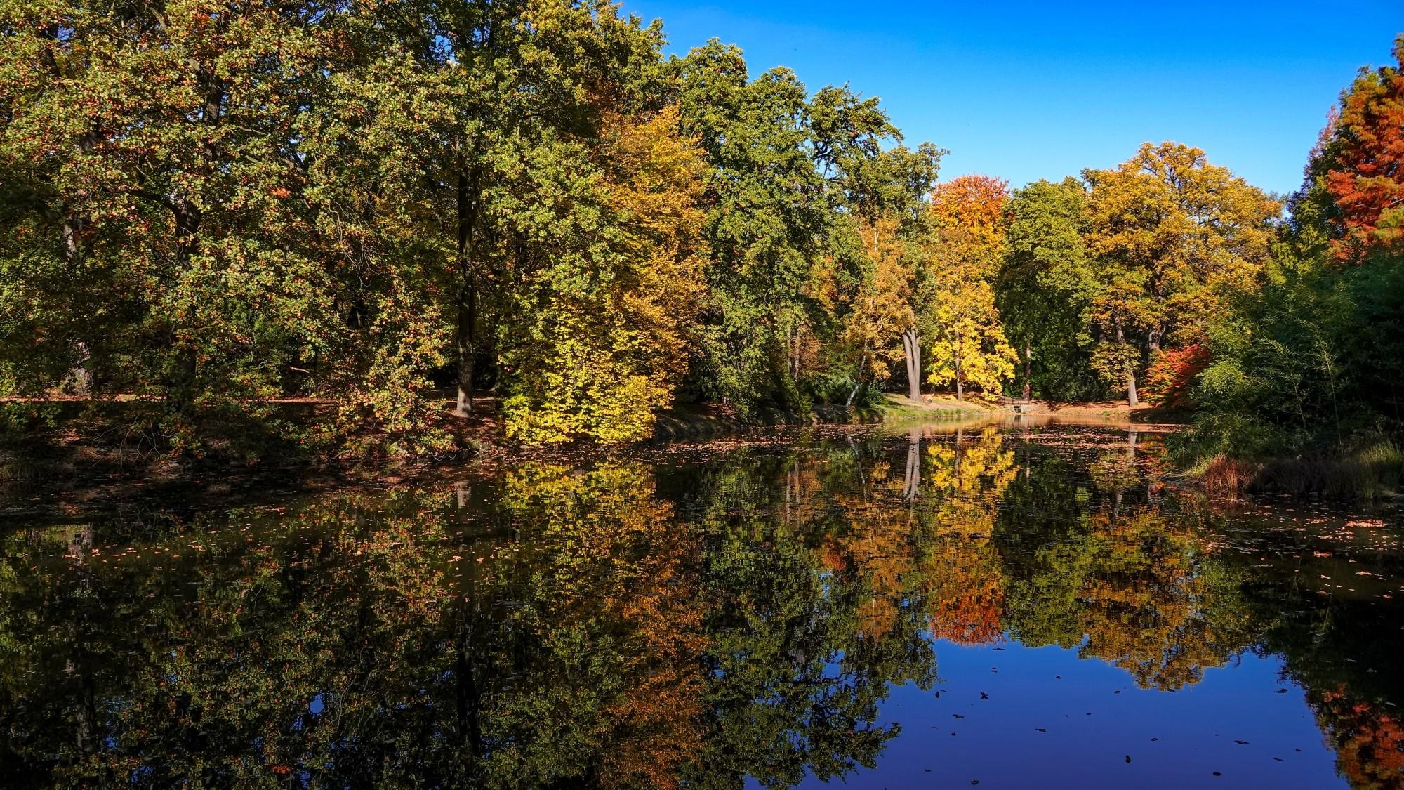 Wszystkie barwy jesieni - zdjęcie 1