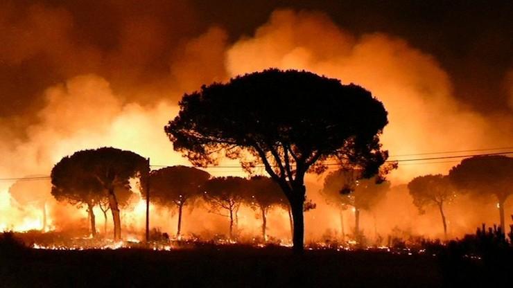 Już ok. 2000 osób ewakuowano z powodu pożaru na południu Hiszpanii