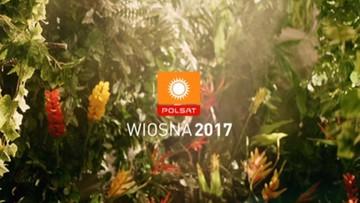 """""""Idol"""", """"Niania w wielkim mieście"""". Wiosenne hity Polsatu"""