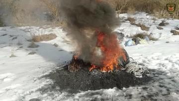 Przyjechali opalać kable. Ogień rozpalili pod... fotopułapką Straży Miejskiej