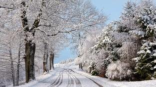 Spacer przez zimę (4K)