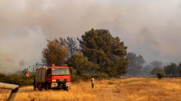 Grecja. Trwa walka z pożarami. Temperatury sięgają blisko 45 st. Celsjusza