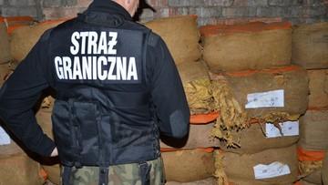 Nielegalne krajalnie tytoniu w Lubuskiem. Zajęto maszyny oraz tytoń warte prawie 3,5 mln zł