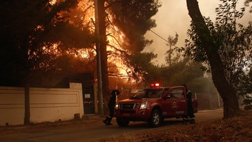 """Pożar nie przedmieściach Aten. """"Ogień wymknął się spod kontroli"""""""