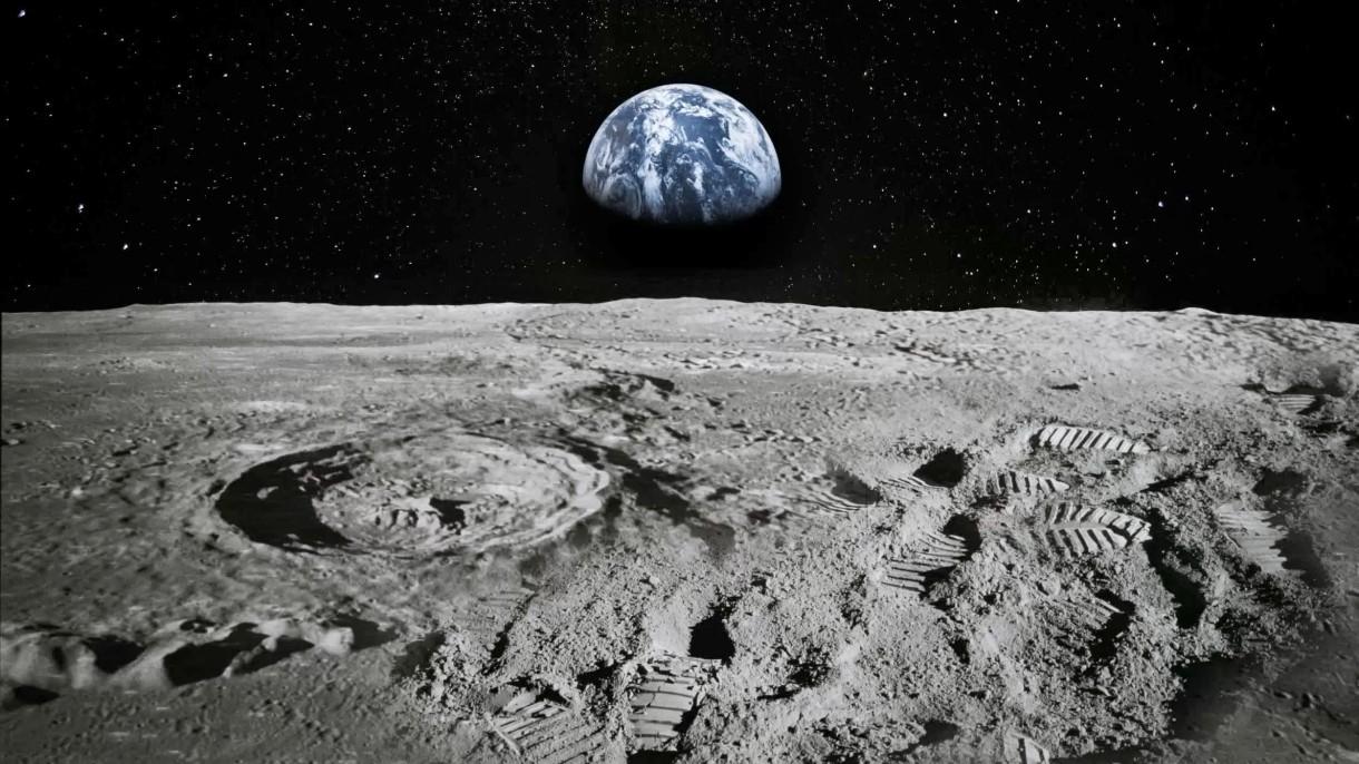 """Izrael zasiał na Księżycu biologiczne życie? """"Te stworzenia przetrwają wszystko"""""""