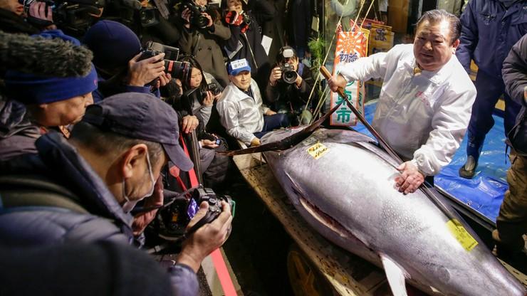 Tuńczyk sprzedany za 323 tys. dolarów. Ostatnia noworoczna aukcja na targu Tsukiji