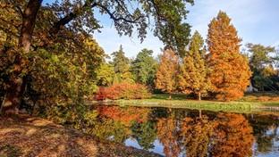 09.10.2021 06:00 Prognoza 16-dniowa: Jaka będzie złota jesień? Słoneczna i ciepła, a może mokra i zimna? [MAPY]
