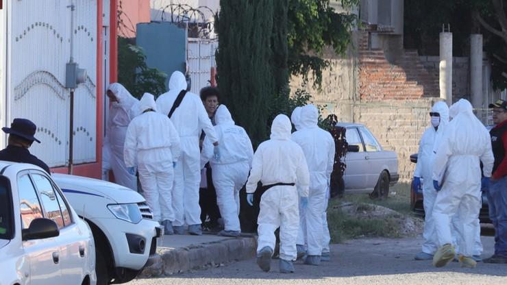 Zabito studentów, ich ciała rozpuszczono w kwasie. Wzięto ich za członków konkurencyjnego gangu