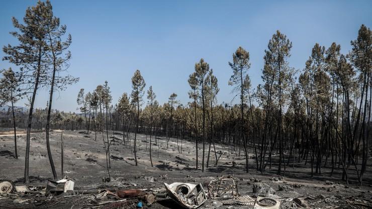 Ugaszono dwa pożary w Portugalii, w których obrażenia odniosło ponad 50 osób