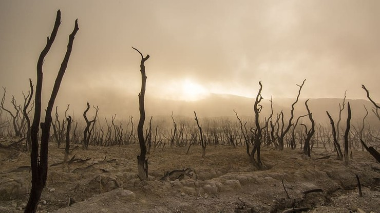 Przeludnienie Ziemi wymusi przesiedlenie ponad miliarda ludzi? Niepokojąca prognoza