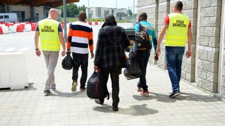 Imigranci zatrzymani przy granicy z Ukrainą. Chcieli dostać się do Francji