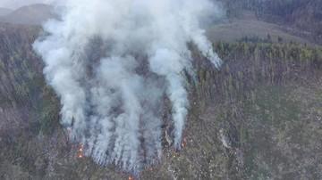 Pożar lasu w Tatrach Wysokich na Słowacji. Ewakuowano turystów