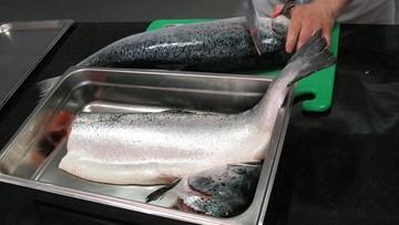 Koniec strajku Polaków w norweskiej przetwórni ryb. Podpisali z pracodawcą układ zbiorowy