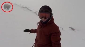 Niedźwiedź gonił snowboardzistkę, a ona nagrywała