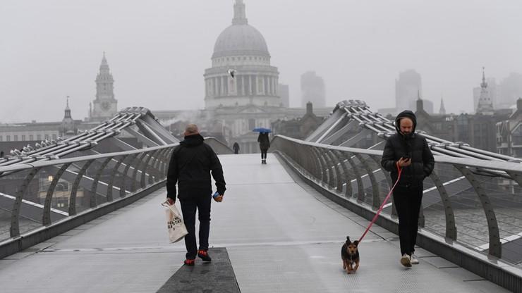 Rekordowy spadek liczby Polaków mieszkających w Wielkiej Brytanii