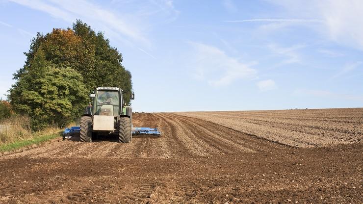 Unia będzie szkolić rolników z... marketingu