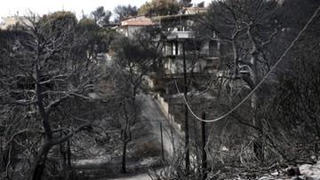 """Są """"poważne przesłanki"""", że pożary w Grecji były spowodowane podpaleniem"""