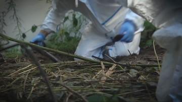 Odnaleziono szczątki kobiety zaginionej 7 lat temu