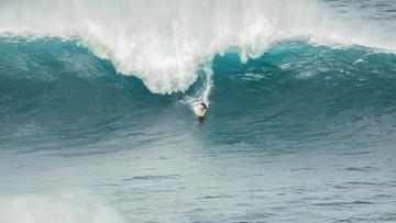 Surfer zaatakowany przez 3-metrowego rekina. 60-latek nie żyje