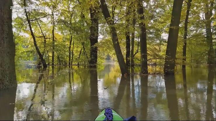 """Kajakiem przez zalany las. """"Coś takiego pod własnym domem"""""""