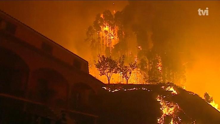 Pożary w Portugalii. Szefowa MSW podała się do dymisji
