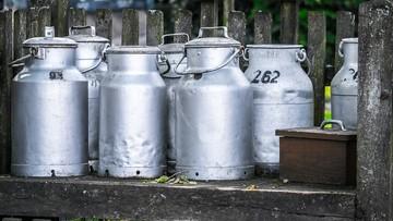 162 mln litrów mleka wyrzucili rolnicy w USA w związku z jego nadprodukcją