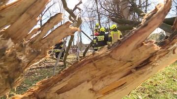 Strażacy walczą ze skutkami wichur. W całym kraju wiatr uszkodził 617 budynków
