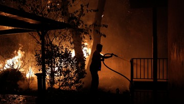 Pożoga w Grecji. Tysiące mieszkańców uciekło przed ogniem