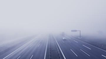 Gęste mgły, wysokie ciśnienie i porywisty wiatr. Pogoda na wtorek