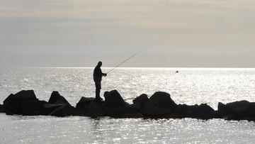 W Bałtyku ubyło ryb. Nie ma to związku z powstaniem gazociągu
