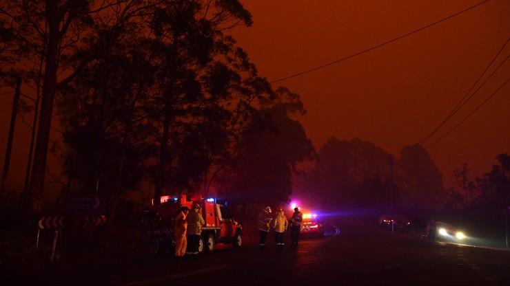 Polscy strażacy pomogą w Australii? Jest deklaracja szefa rządu